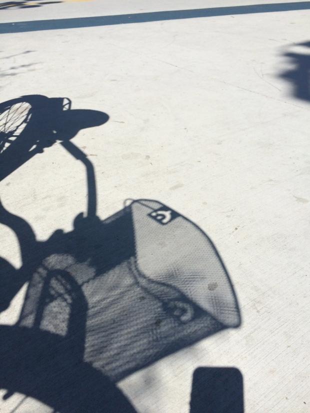 My friend rode my bike Gidget.