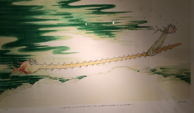 Sawfish with Such a Long Snout
