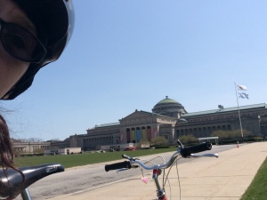 The Museum of Science and Industry,